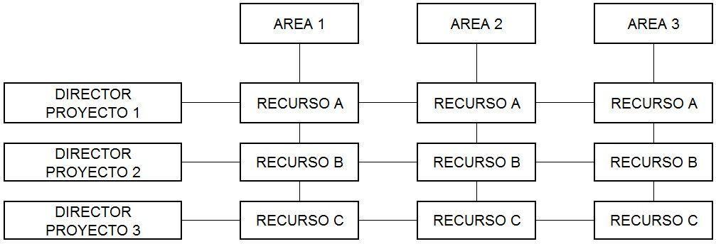 organización en la dirección de proyectos - matricial